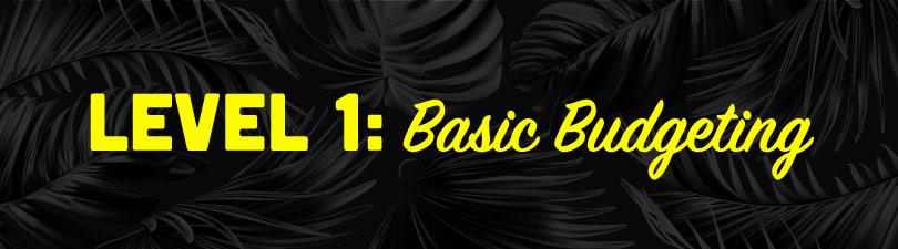 Level 1:Basic Budgeting